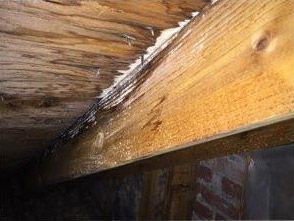 rot on rafters